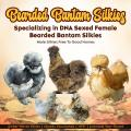Age-Appropriate Chores for Children with Chickens - Backyard Poultry